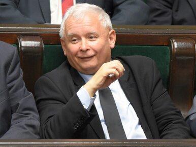 """Prezes PiS żartuje z protestujących. """"Ich atak odparł mój kot"""""""