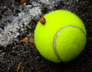 US Open: porażka Matkowskiego w mikście