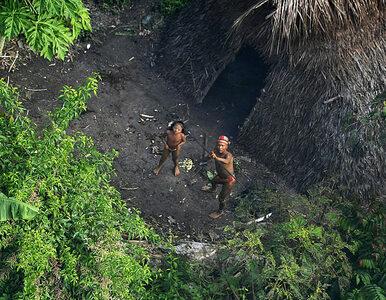 """""""Kroili ich ciała i wrzucali do wody"""". Masakra w Amazonii, wymordowano..."""