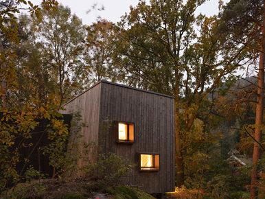 Leśne domy, które pomagają w powrocie do zdrowia