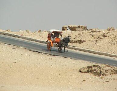 Beduini znów atakują - kolejne porwanie w Egipcie